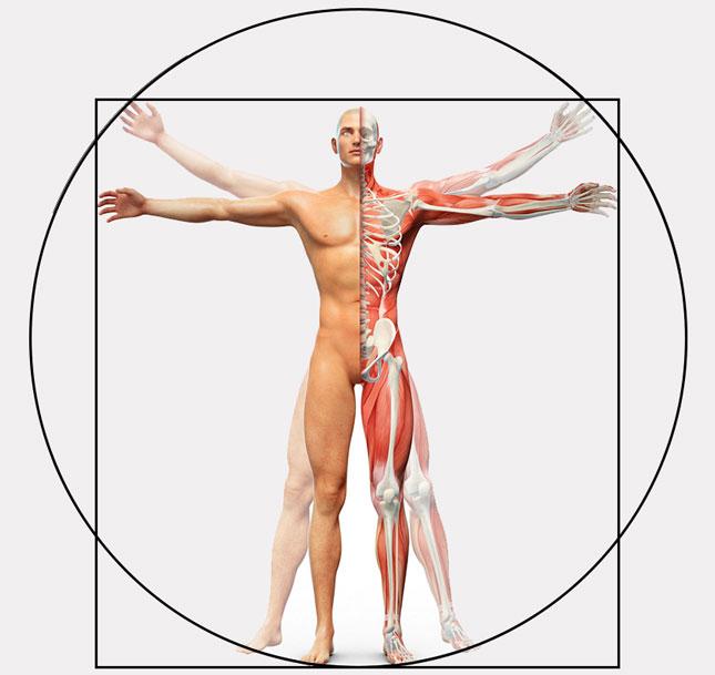 Poradnik używania ortez ortopedycznych