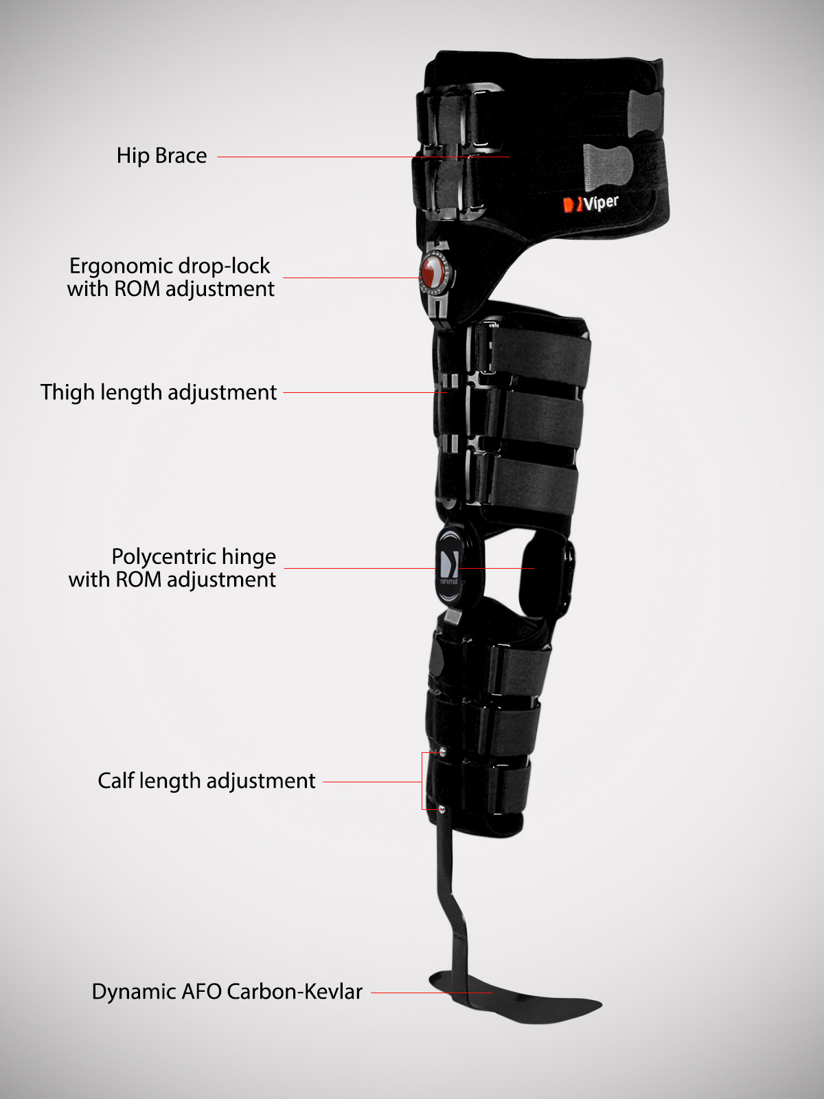 Lower Limb Support Complex 2r Reh4mat Lower Limb