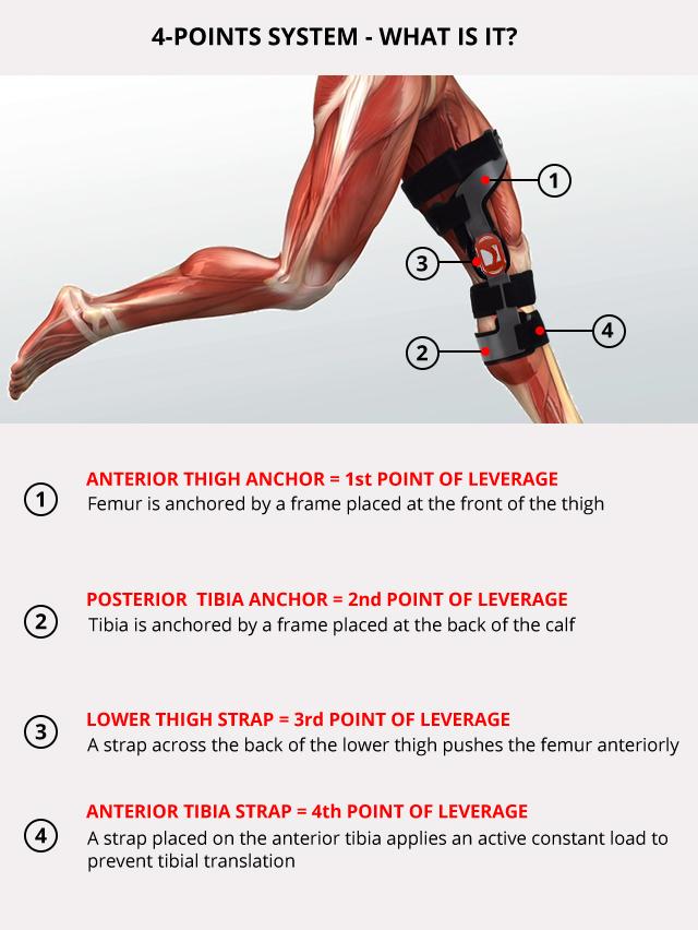 Lower limb support RAPTOR/2