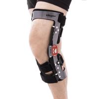 Lower limb support RAPTOR BIONIC