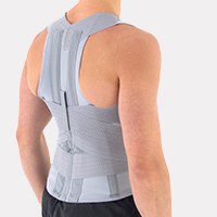 Torso support AM-PES-06 GREY
