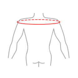 The circumference of arms at the level of humeral head